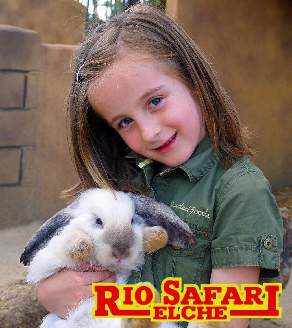kaniner fakta for barn