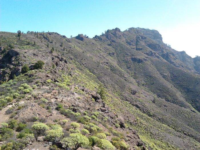 Altavista Artenara Gran Canaria