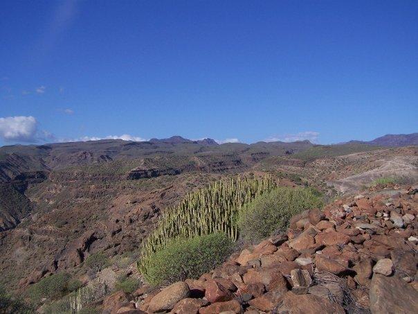 La Ruta Noruega Gran Canaria